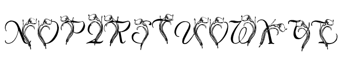 LMS Calla Lily Font UPPERCASE