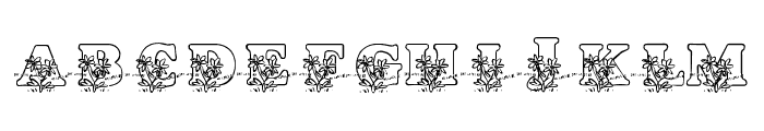 LMS Loves Me Font UPPERCASE