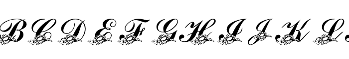 LMS Sunflowers for Jodie Font LOWERCASE