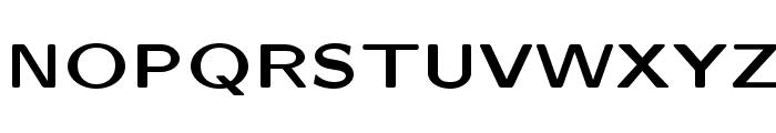LMSansQuot8-Bold Font UPPERCASE