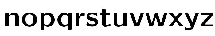 LMSansQuot8-Bold Font LOWERCASE