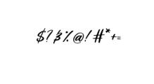 LoosyBrush-Regular.ttf Font OTHER CHARS