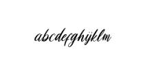 LoosyBrush-Regular.ttf Font LOWERCASE