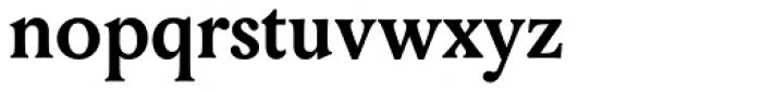 Louize Bold Font LOWERCASE