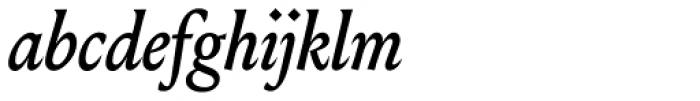 Louize Display Medium Italic Font LOWERCASE