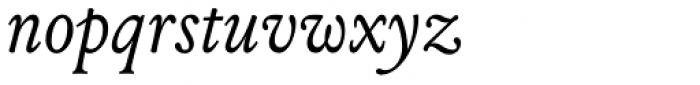 Louize Italic Font LOWERCASE