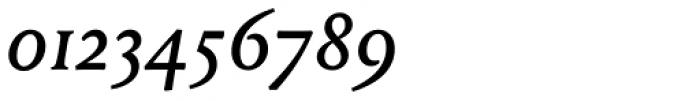 Louize Medium Italic Font OTHER CHARS