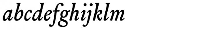 Louize Medium Italic Font LOWERCASE