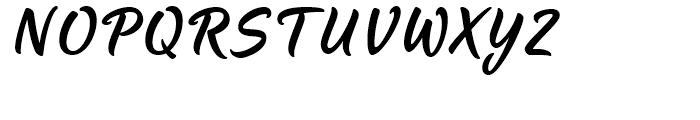 LP Pinsel Satt Regular Font UPPERCASE