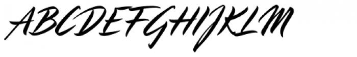 LP Pinselschrift Font UPPERCASE