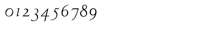 LTC Metropolitan Italic Font OTHER CHARS