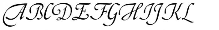 LTC Artscript Font UPPERCASE