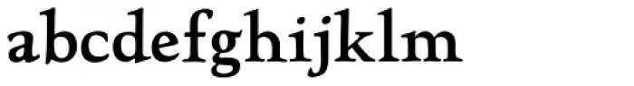 LTC Hadriano Pro Font LOWERCASE