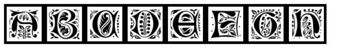 LTC Jacobean Initials Framed C Font LOWERCASE