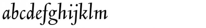 LTC Kaatskill Italic Font LOWERCASE