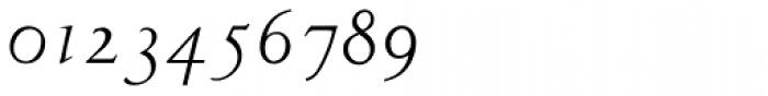 LTC Metropolitan Italic Alt Font OTHER CHARS
