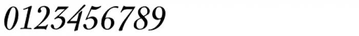 LTC Nicolas Cochin Italic Font OTHER CHARS