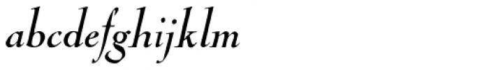 LTC Nicolas Cochin Italic Font LOWERCASE