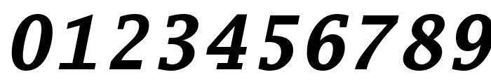 Luxi Mono Bold Oblique Font OTHER CHARS