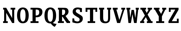 Luxi Mono Bold Font UPPERCASE