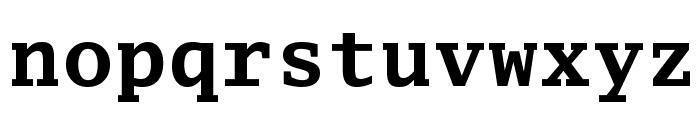 Luxi Mono Bold Font LOWERCASE