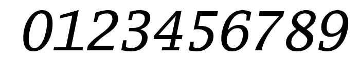 Luxi Mono Oblique Font OTHER CHARS