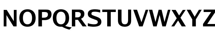 Luxi Sans Bold Font UPPERCASE