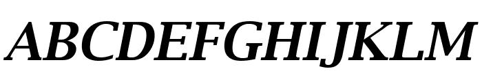 Luxi Serif Bold Oblique Font UPPERCASE