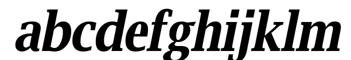 Luxi Serif Bold Oblique Font LOWERCASE