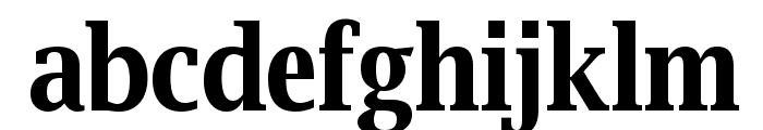 Luxi Serif Bold Font LOWERCASE