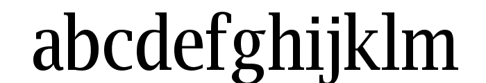 Luxi Serif Regular Font LOWERCASE