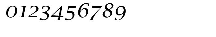Lucida Calligraphy Regular Font OTHER CHARS