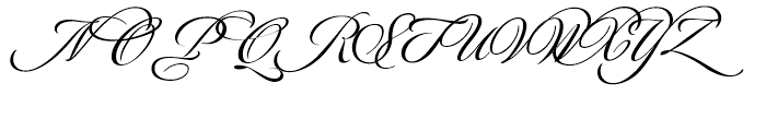 Luxurious Alternates Font UPPERCASE