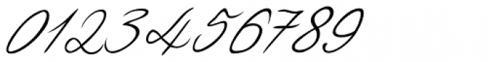 Luitpold Handwriting Font OTHER CHARS