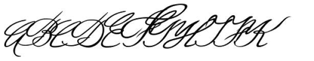 Luitpold Handwriting Font UPPERCASE