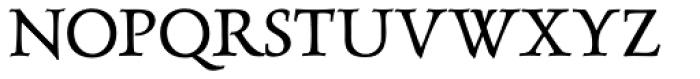 Luxurious Roman Font UPPERCASE