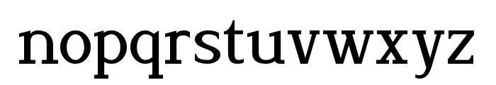 Lyons Serif Font LOWERCASE