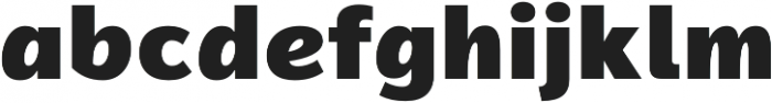 Magnum Sans Pro Alfa Black otf (900) Font LOWERCASE