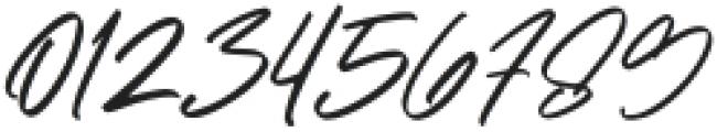 Maitland Script Italic otf (400) Font OTHER CHARS