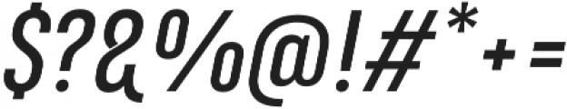 Marianina FY Medium Italic otf (500) Font OTHER CHARS
