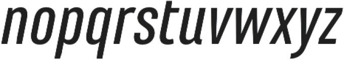 Marianina FY Medium Italic otf (500) Font LOWERCASE