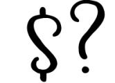 Magic Winter script font duo & logos 1 Font OTHER CHARS