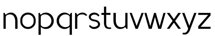 MadeynSans Light Font LOWERCASE