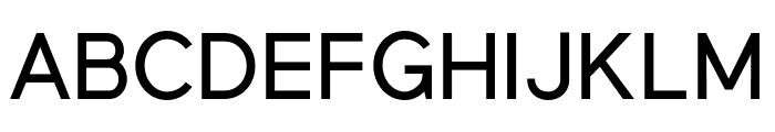 MadeynSans Regular Font UPPERCASE