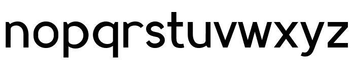 MadeynSans Regular Font LOWERCASE