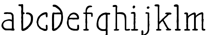 Maiers Nr21 Pro Font LOWERCASE