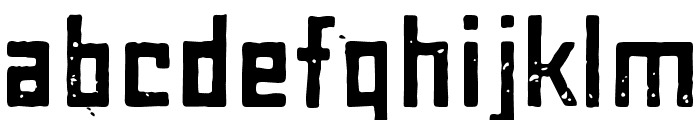 MaiersNr8-Bold Font LOWERCASE