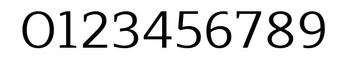 Maitree Regular Font OTHER CHARS