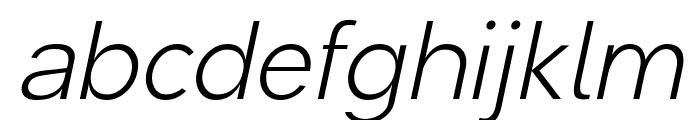 Malter Sans Light Italic Demo Font LOWERCASE