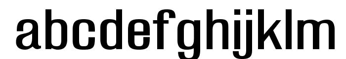 ManchesterOpti Font LOWERCASE